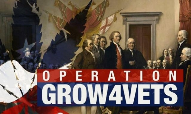 Operation-Grow4Vets-Seeks-to-Provide-Veterans-with-Free-Cannabis-Weedist-640x383