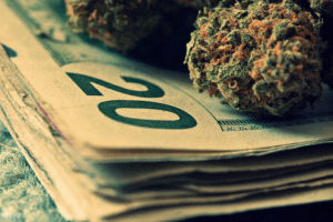 callling-for-money-for-marijuana-research-thcf