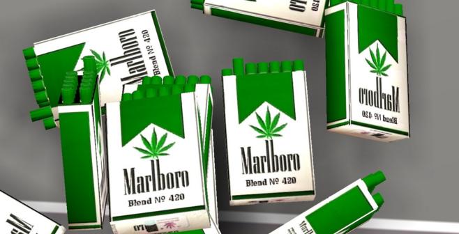 Image Gallery Marlboro Cannabis