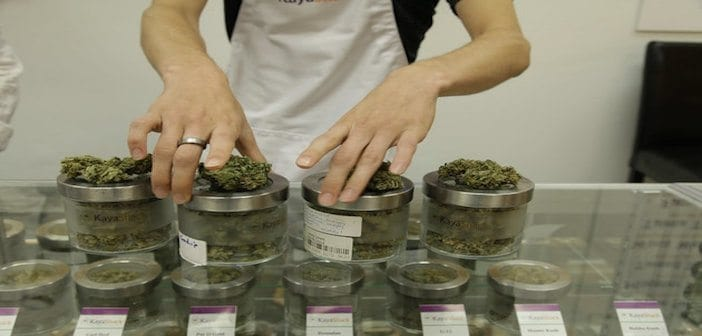 The Cannabis Industry Employs Around 200000 Americans
