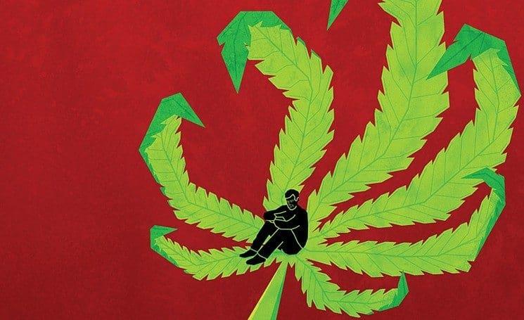 Arizona Says YES to Putting Recreational Marijuana on The Ballot