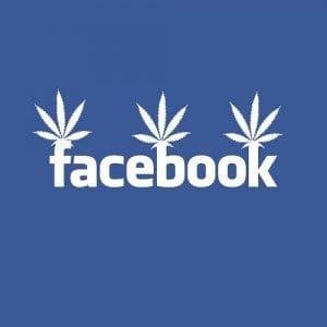 fb-weed-300x300