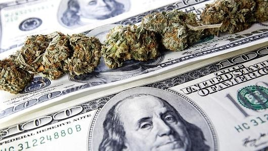 Marijuana Industry Issues That Could Alter Your Business Plan in 2017