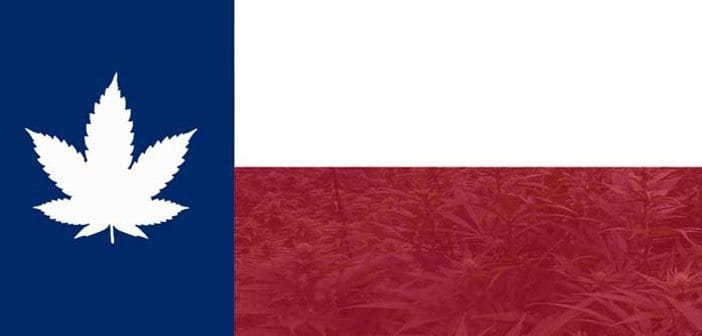 Medical Cannabis Advocates Tell Texas Lawmakers: Get Moving