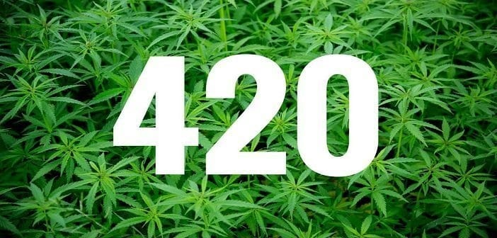 What the Guys Who Coined '420' Think About Their Place In Marijuana History