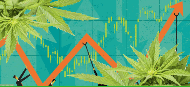 Outstanding Shares Worrisome Sign for Any Company Including Cannabis Businesses