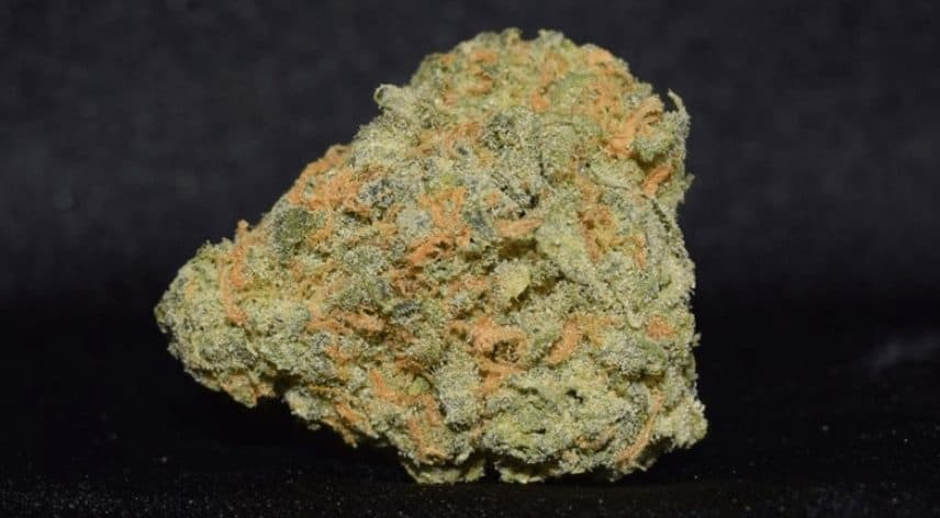 weed-reviews-super-silver-lemon-haze