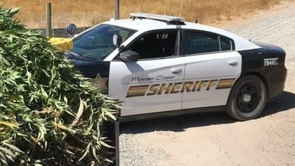 Over 7500 Pounds of Marijuana Seized in Monterrey County California before California legalizes recreational marijuana. California will be one of the states that legalized recreational weed on January 1, 2018.