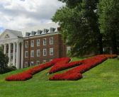University of Maryland Cancels Their MMJ Courses for Nurses