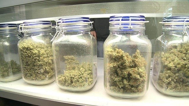 Missouri's Marijuana Legalization Fight
