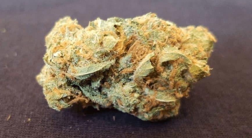 420 Weed Reviews: Meet Pennywise