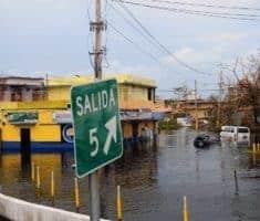 Puerto Rico Cannabis Ruined by Hurricane Maria