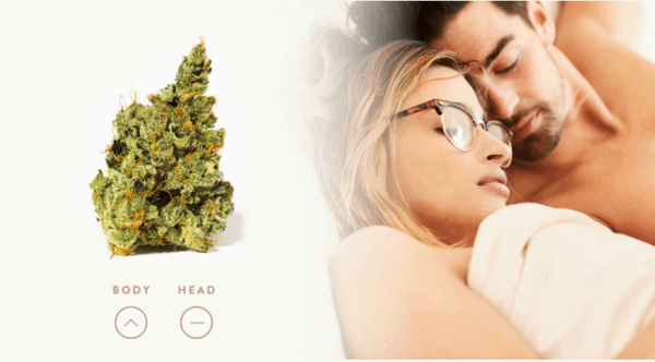 Weed Products For Every Type of Lover