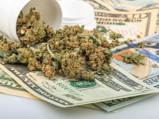 15 States Possibly Legalizing Marijuana Soon
