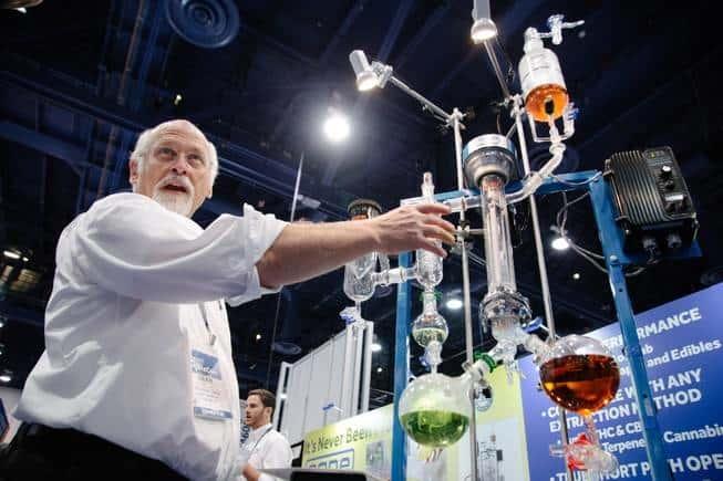 Hemp Companies Boom Due To Marijuana Legalization