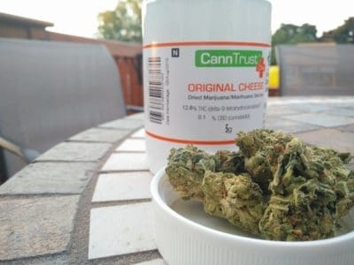 CannTrust May Be Added to the TSX After May, 2018