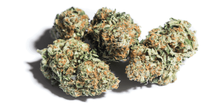 420 Marijuana Reviews: Scooby Snacks