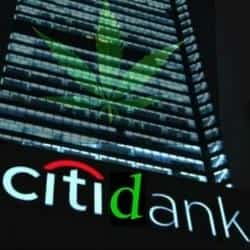 Citibank Fights Use Of 'Citidank' Name, marijuana news