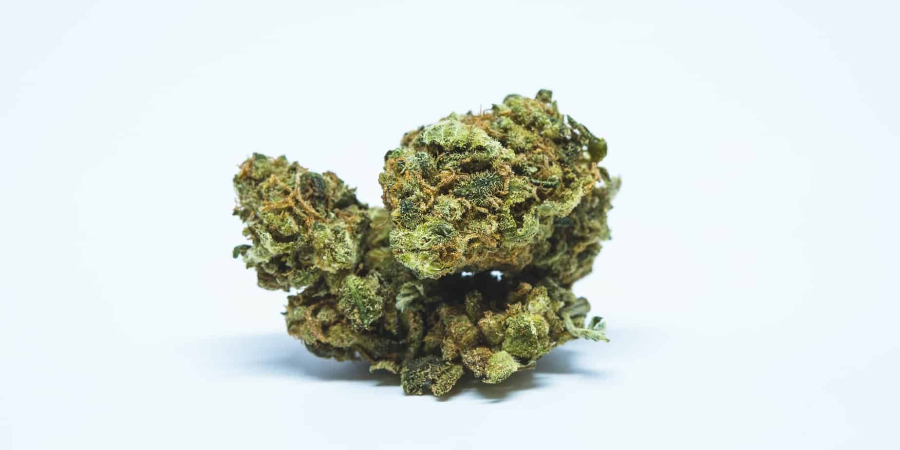 The Best Strains To Help With ADHD, weed news