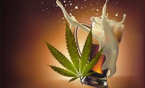 Weed And Alcohol In The U.S., marijuana news
