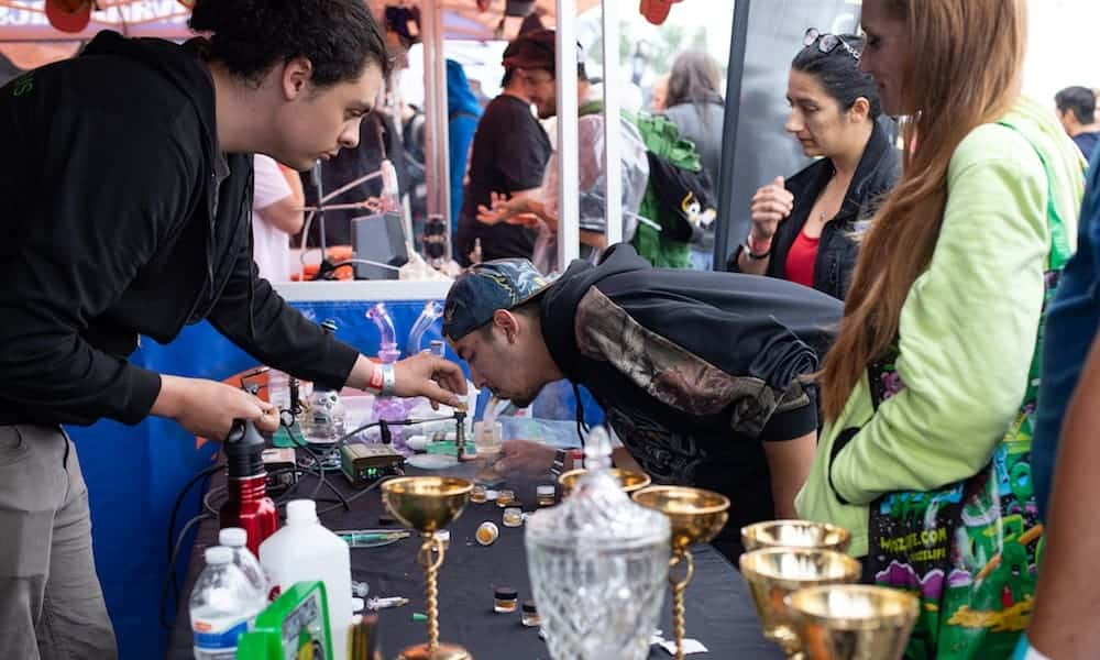 2018's Michigan Cannabis Cup Winners. weed news