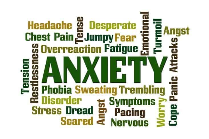 Best Weed Strains For Treating Anxiety, trending marijuana news