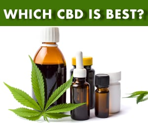 Which CBD is Best