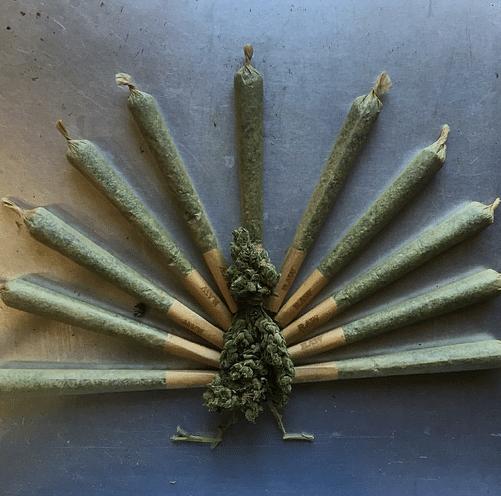 Best Cannabis Strains For Thanksgiving